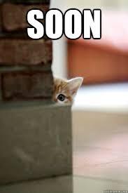 Soon Meme - soon kitty memes quickmeme