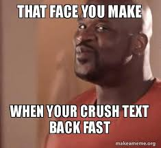 Make Meme Text - that face you make when your crush text back fast make a meme