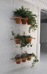 kinds of shelves hanging plants decoration idea homesfeed