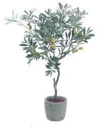 artificial potted olive tree modern trees by gold