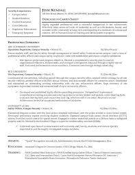 professional resume software cyber security resume 19 software developer fresher sample