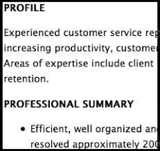 profile example for resume sample profile for resume resume examples not to be confused how