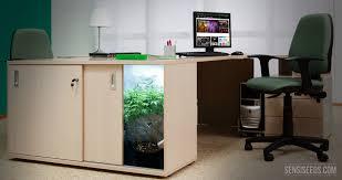 chambre de culture cannabis complete différence entre la micro culture et la culture d intérieur