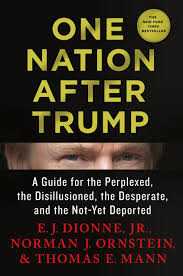 one nation after trump a guide for the perplexed the