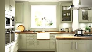 olive green kitchen cabinets 21 with outstanding birdcages