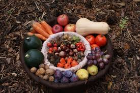 harvest thanksgiving basket pictures free stock photos