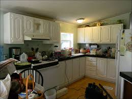 kitchen painting kitchen cabinets painting cheap furniture