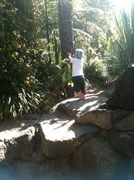 Melb Botanical Gardens by The Children U0027s Garden Royal Botanical Gardens Melbourne