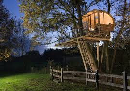 Tree Houses Around The World The Worlds Biggest Treehouse Tree Houses Treehouse And Awesome