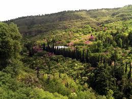 Largest Botanical Garden by National Botanical Garden Of Georgia Wikipedia