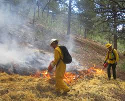 Wildfire Training by Krew Our Blog Montana Conservation Corps