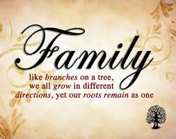 quotes about family in the outsiders quotes about strong family 119 quotes