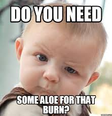 Burn Meme - burn meme quotes and humor