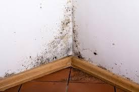 enlever humidité chambre comment enlever la moisissure