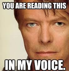 Bowie Meme - you are reading this in my voice david bowie quickmeme