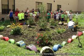 How To Plant A Garden In Your Backyard At Schools