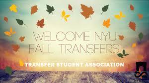 nyu transfer student association tsa education 233 photos