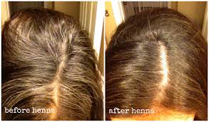 Hair Color To Cover Gray Henna Hair Dye Gray Coverage New Hair Style Collections