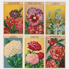 flower seed packets set 1 24 vintage flower seed packet labels