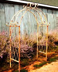Metal Arches And Pergolas by Wrought Iron X Arch Trellis Flower Arbor