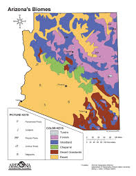biomes map arizona biomes map classbrain s state reports state symbols