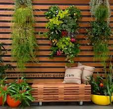 vertical gardens green plant walls living wall systems