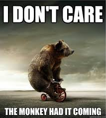 I Don T Care Meme - bike meme i don t care the monkey had it coming picsmine