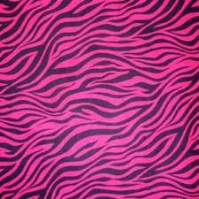 Zebra Print Rug With Pink Trim Zebra Print Bedroom