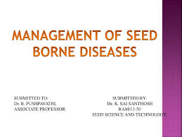management of seed borne diseases