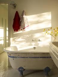 bathroom refinishing ideas chic bathtub design and collection ideas exciting spray bathtub