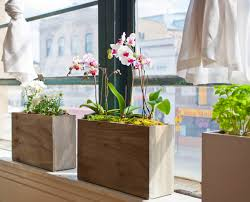 indoor window planters new stylish and simple hydroponic windowsill planter urban gardens
