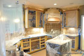 spray painting kitchen cabinets kitchens design