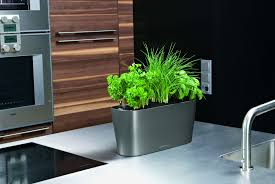 Window Sill Planter by Lechuza Delta 20 Self Watering Planter Metropolitan Wholesale