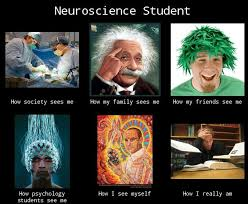 Neuroscience Meme - writing a 3000 word essay isn t so bad meme by youforeign