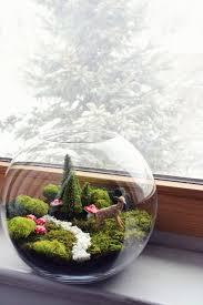 Pinterest Fairy Gardens Ideas by Best 25 Fairy Terrarium Ideas On Pinterest Terrarium Terrarium