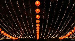 5 thanksgiving traditions around the worldthe languagecorps