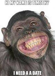 Chimp Meme - hi my name is timothy i need a a date meme happy chimp 71730