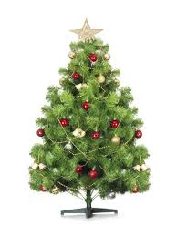 don u0027t overpay for your christmas tree this year