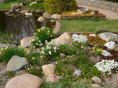 Rock Garden Features Retaining Wall With Pockets For Plants This Is What I Want