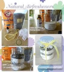 Air Freshener For Bathroom by 160 Best Air Fresheners Images On Pinterest Air Freshener