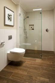 Best Flooring For Basement Bathroom by 33 Best Basement Bathroom Images On Pinterest Bathroom Ideas