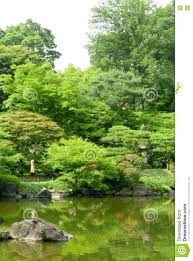 green plants pond with reflection in japanese zen garden stock