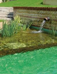 Natural Swimming Pool 157 Best Natural Swimming Pools Ponds Images On Pinterest
