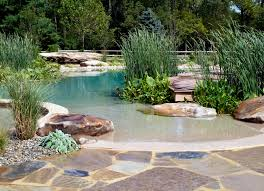 Swimming Pool In Backyard by Natural