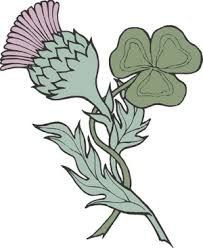 Scottish Tattoos Ideas Scottish Thistle Tattoo Idea Best Tattoo Ideas Gallery