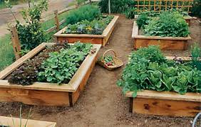 How To Build A Raised Garden Bed Cheap Raised Garden Beds Diy Diy Raised Garden Bed Best 25 Box Garden