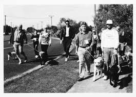 History Of The Blind History Of Blind Foundation Guide Dogs Blind Foundation