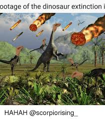 Dutch Memes - ootage of the dinosaur extinction i dutch meme hahah meme on me me