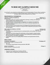 Sample Chronological Resume by Download Chronological Sample Resume Haadyaooverbayresort Com
