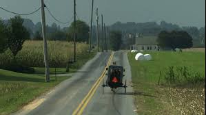 Pennsylvania travel videos images Amish horse and buggy next to a lone tree in lancaster resiz